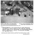1825(ad) - F.Schubert. Linde in der Steinwänd