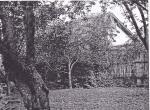 Musil.Garten.Preuenhuberstr.4.Corinobuch