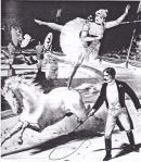 Musil.Zirkusreiterin.Corinobuch